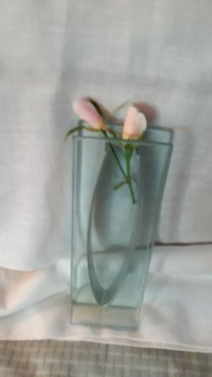 Glass/metal unique vase for Sale in San Diego, CA