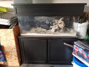 60 gallon saltwater or freshwater setup.. for Sale in Santa Maria, CA