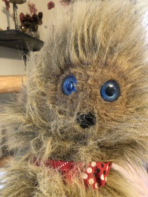 Ugliest puppet ever for Sale in Saint James, MO