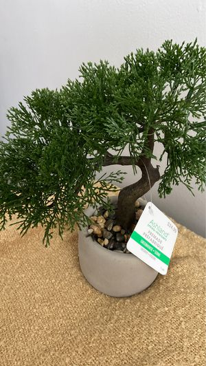 Fake Plant for Sale in Fontana, CA