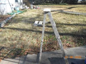 Werner Real Tree Camouflage Ladder 5-ft for Sale in Hensley, AR