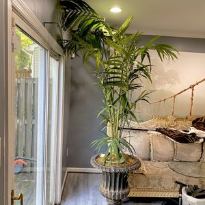 8 Feet Tall Artificial plant for Sale in District Heights, MD