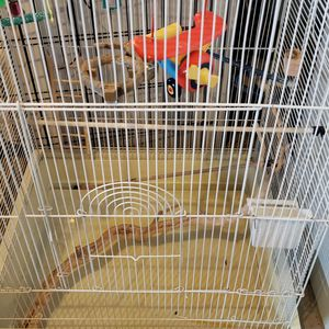 Bird Cage for Sale in Caldwell, ID