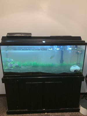100 Gallon tank with everything included!! for Sale in Wichita, KS