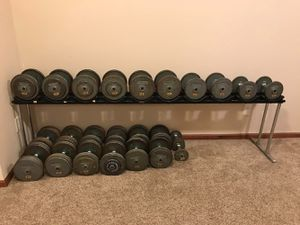 TROY Pro-style Dumb bells with rack for Sale in Larchwood, IA