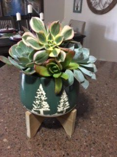 Planter w Succulents / Christmas / Winter / Holiday / Gift / Decor for Sale in San Marcos, CA
