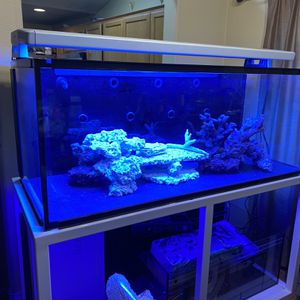 Fish Tank for Sale in Tigard, OR