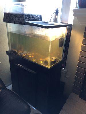 Aquarium for Sale in Moreno Valley, CA