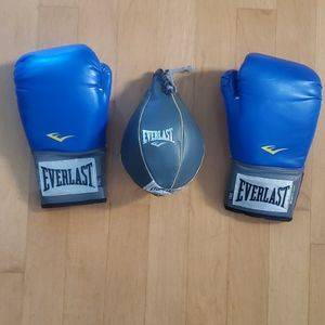 Everlast 14oz Boxing Gloves And Speed Bag for Sale in Tijuana, MX