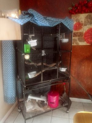 Bird cage with 2 birds for Sale in Altamonte Springs, FL