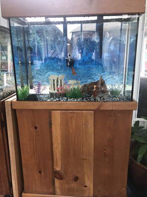 40 gallon fish tank for Sale in Federal Way, WA
