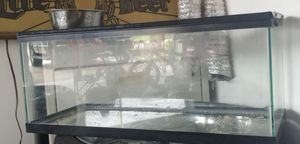 Reptile aquarium for Sale in Cypress Gardens, FL