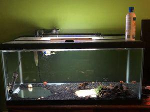 Aquarium fish tank for Sale in Derwood, MD