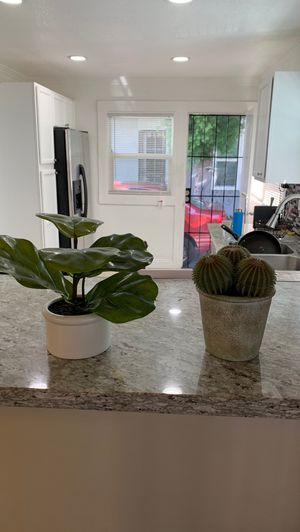 two fake plants for Sale in Long Beach, CA