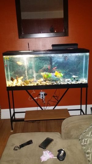 """55 """"Fish Tank for Sale in New Britain, CT"""