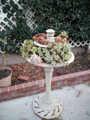Succulent fountain for Sale in Buena Park, CA