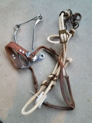 Horse bridle for Sale in Glendale, AZ