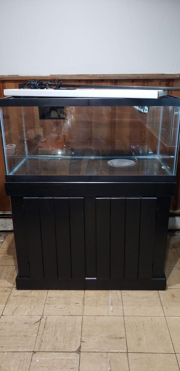 40gal fish tank