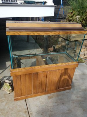 95 gallon back for sale, buyer fell through. Beautiful tank for Sale in Dartmouth, MA