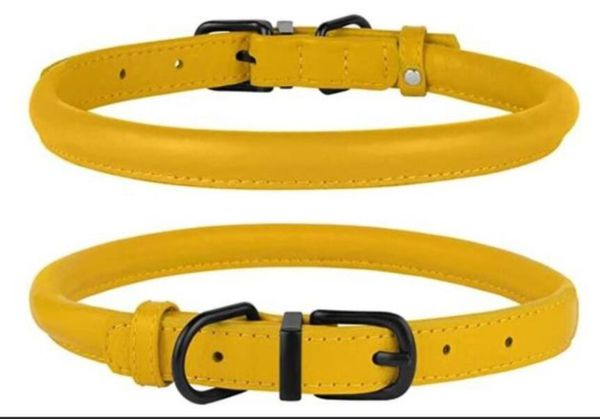 Treat Your Dog! Rolled Leather Dog Collar!