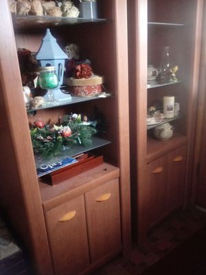 2 shelves for Sale in WSHNGTN CT HS, OH