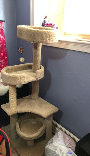 Cat (playgroung) for Sale in Peabody, MA