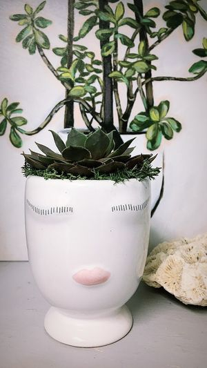 Lady face Vase with succulent for Sale in St. Louis, MO