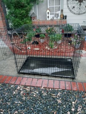 XTRA LARGE DOG CRATE for Sale in Temecula, CA