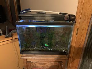 20 gallon aquarium with accessories for Sale in McHenry, IL