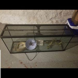 Large Reptile Tank With Some Supplies for Sale in Baltimore, MD