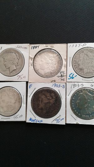 Morgan Dollars for Sale in Inverness, FL