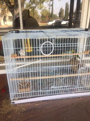 Two parakeet birds with cage for Sale in Hanford, CA