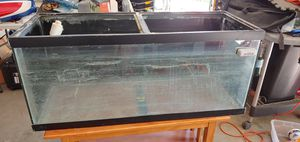 75G fish tank for Sale in Troy, IL