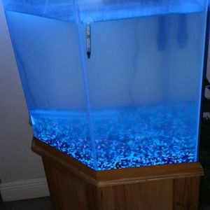 55 Gallon corner Fish Tank With Other Free 55 Tank for Sale in Lake Worth, FL