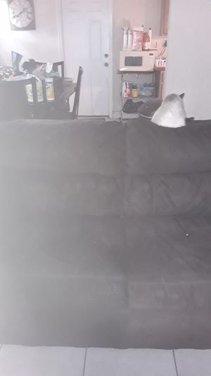 Love seat for Sale in Tampa, FL