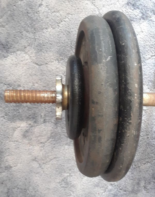 100lbs plates, curl bar,set of spring clips