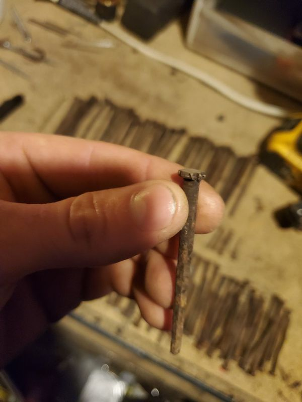 100+year old nails