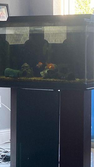 Fish tank for Sale in Hudson, FL