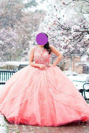 Quinceanera / Sweet 16 Dress for Sale in Roselle, IL