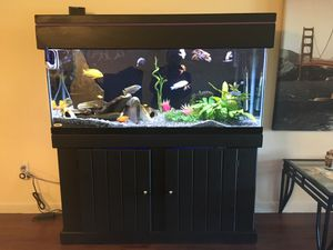 Aquarium 55 gallon fish tank, stand and canopy for Sale in Tampa, FL
