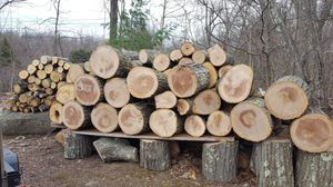 Firewood, white oak and hickory for Sale in Lincoln, RI