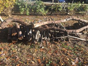 Fire wood free free for Sale in Somers Point, NJ