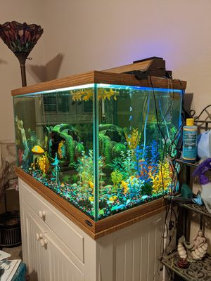 60 gallon freshwater set aquarium fish tank everything included stand extra for Sale in Fresno, CA