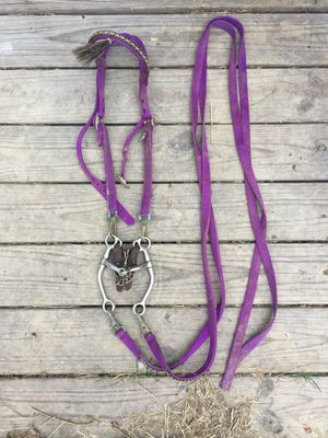 Bridle/bit/chin strap/reins/breast collar for Sale in Mount Gilead, OH