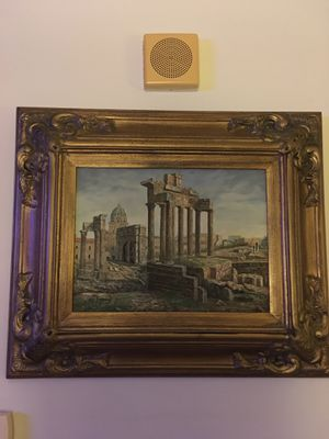 Original paint framed for Sale in Arlington, VA