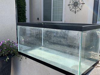 40 Gallon Fish Tank for Sale in Menifee,  CA