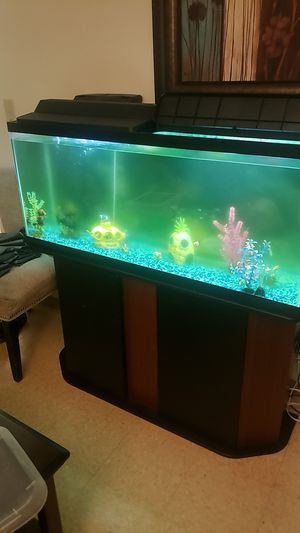 50 Gallon Fish Tank for Sale in Boston, MA