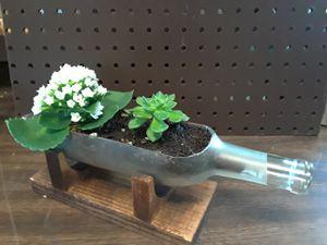 Hand Cut Wine Bottle Terrarium on handmade wood stand for Sale in Arlington, TX