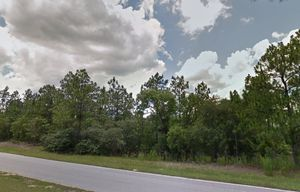 0.23 acre buildable lot with warranty Deed. Paved road and electricity available. Owner financing available for Sale in Dunnellon, FL