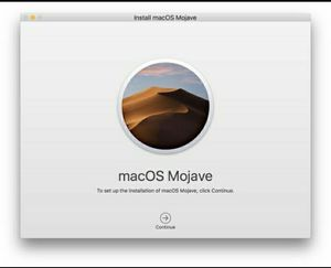Mac OS Mojave 10.14 Installer USB 3.0 32g flashdrive for Sale in Houston, TX